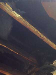 (14) The glue holding the gypsum board to the first-floor ceiling failed in this New York fire. (Photo by author.)