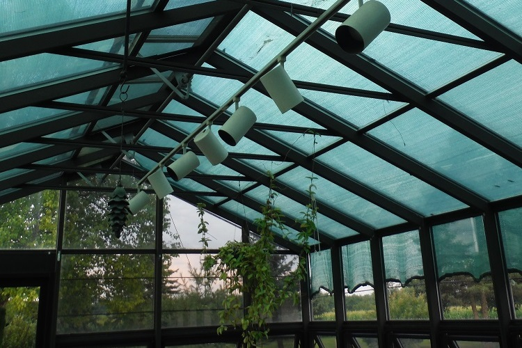 Construction Concerns: Greenhouses