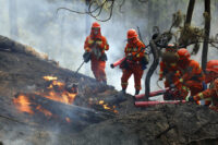 Chinese firefighters at forest fire