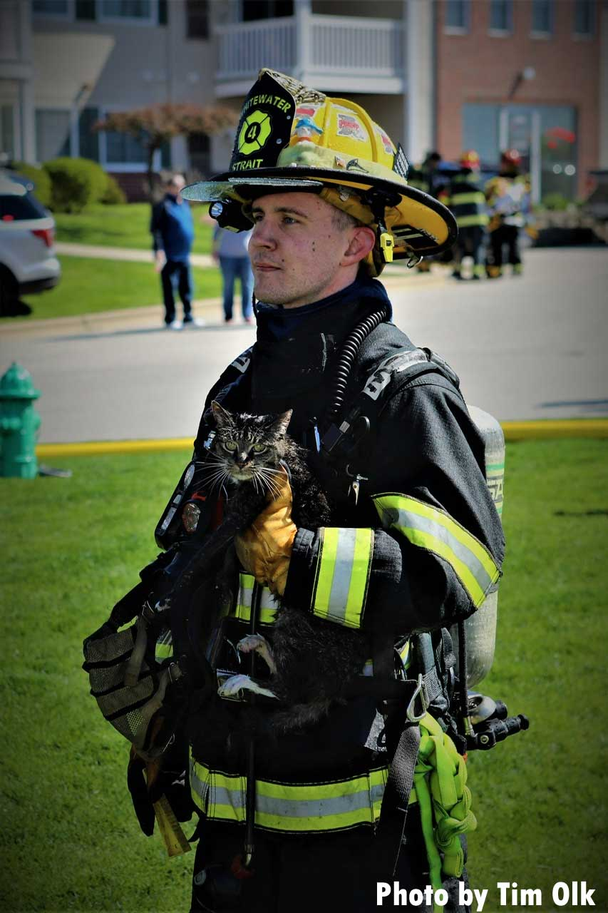 A firefighter holds a kitten