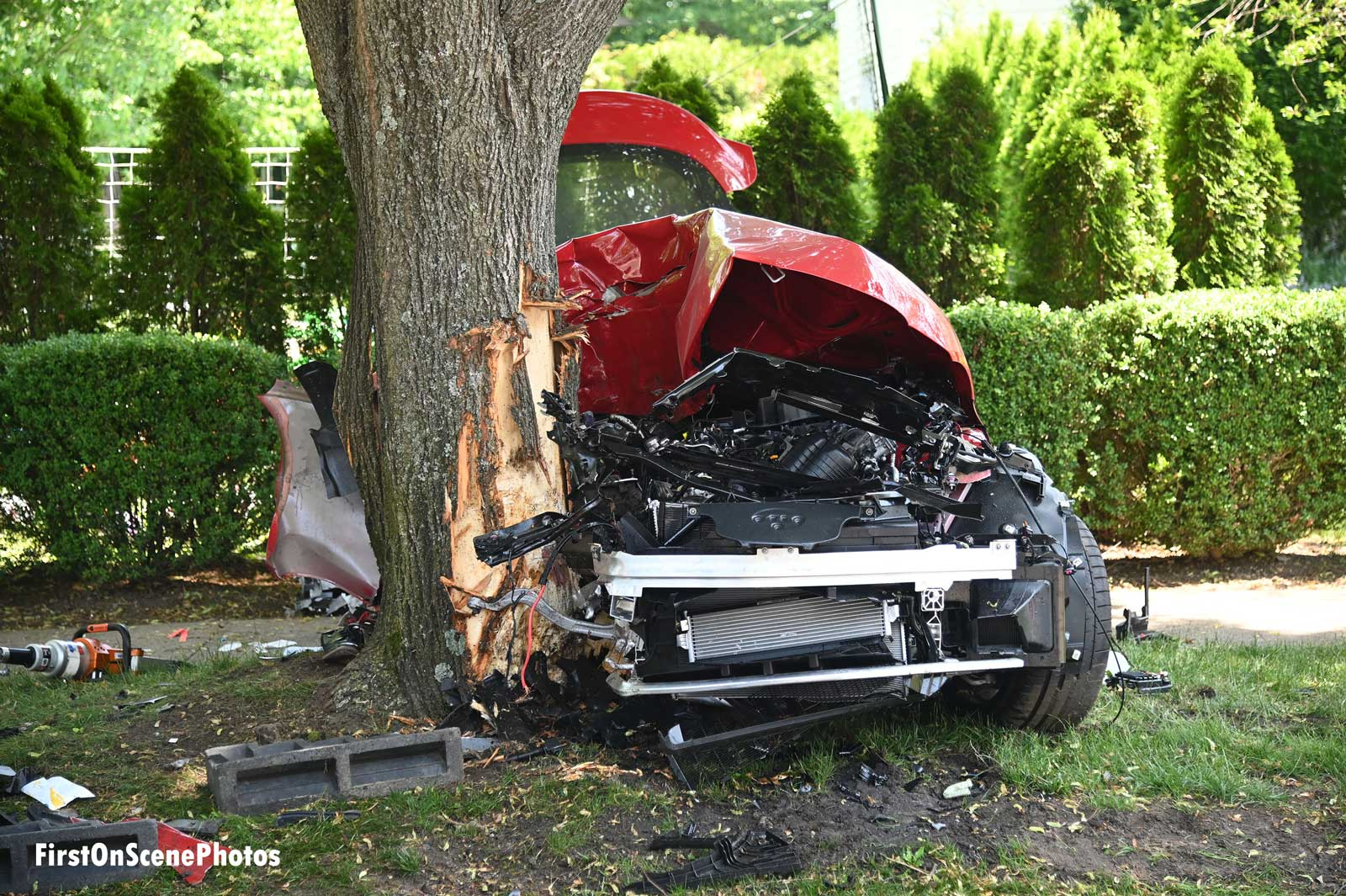 Vehicle smashed against tree