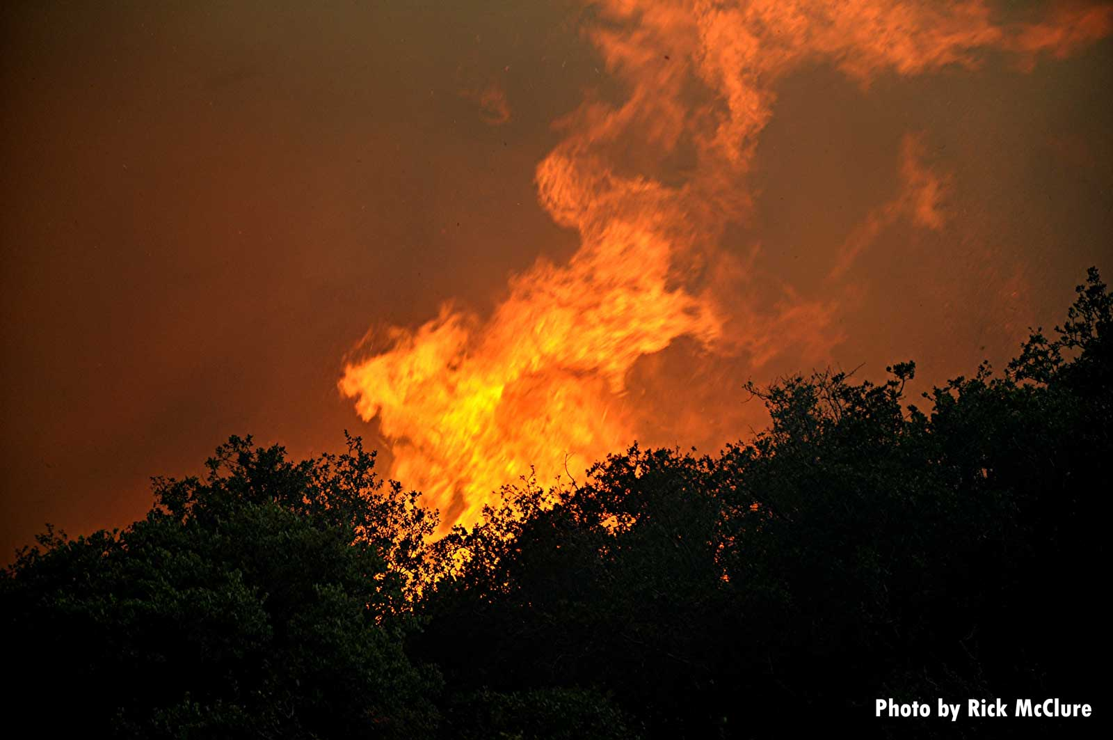 Raging flames over forest canopy