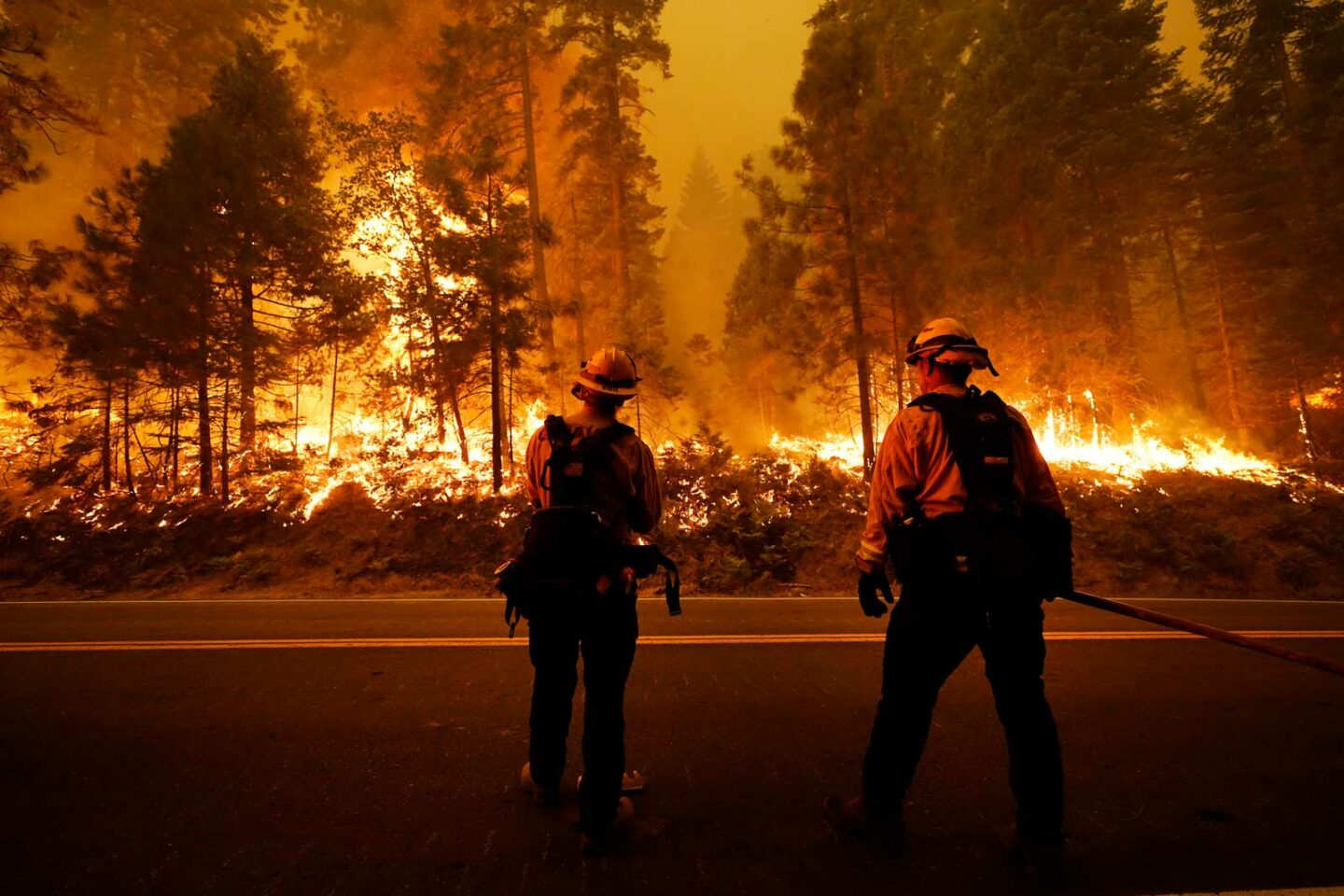 Firefighters stand at site of California wildfire